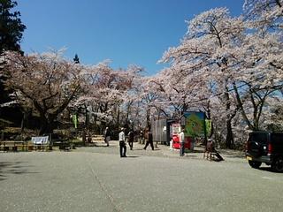2014-04-14 10.46.25.jpg