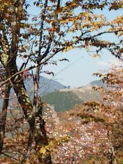 2014-04-14 10.51.23.jpg